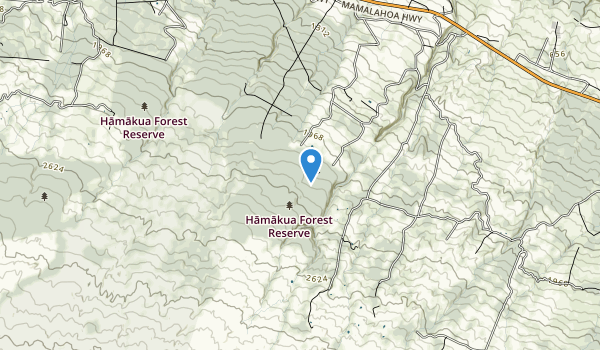 trail locations for Kalopa State Recreation Area