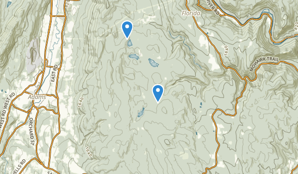 Savoy Mountain State Forest Map