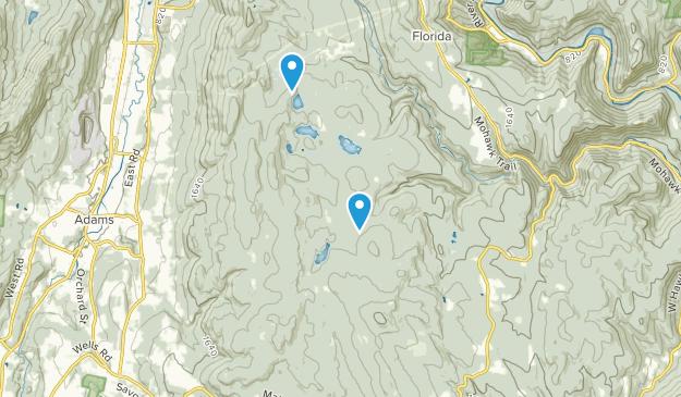 Savoy Mountain State Wald Map
