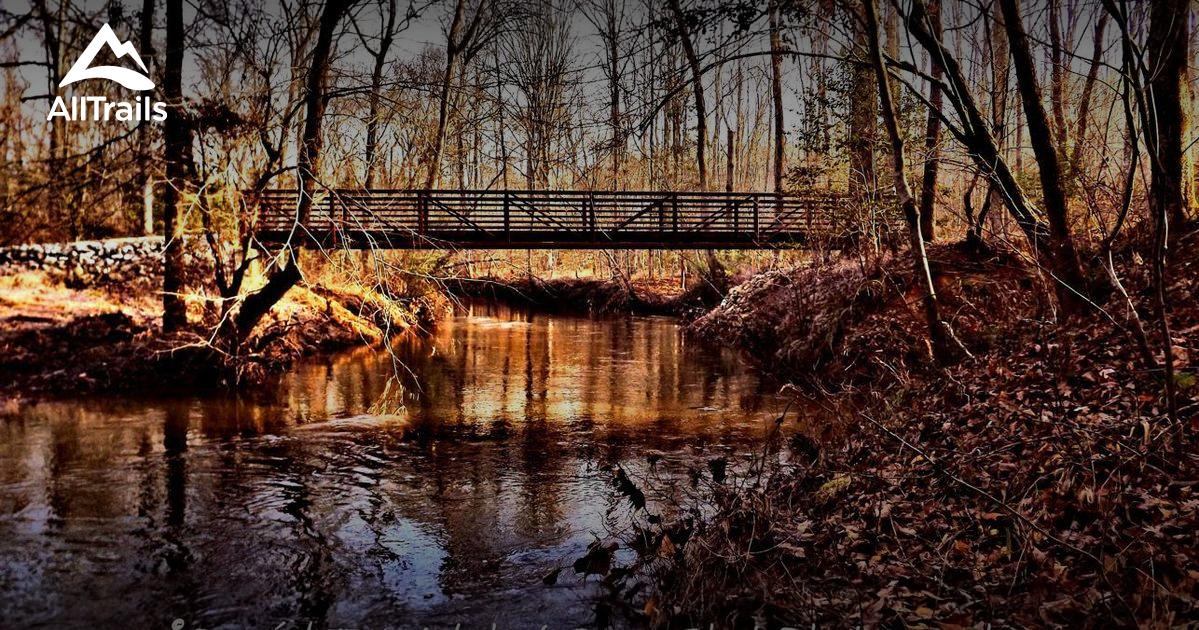 Best Trails In Medoc Mountain State Park North Carolina