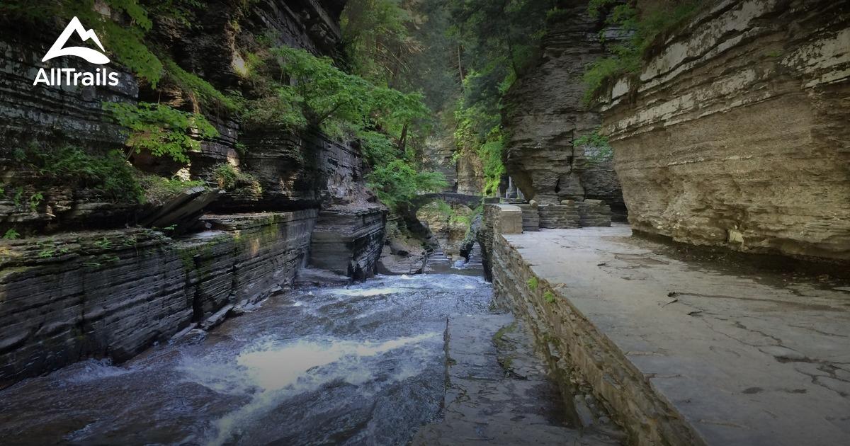 Best Trails In Robert H Treman State Park New York