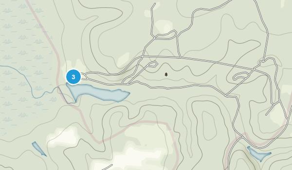 Poinsett State Park Map