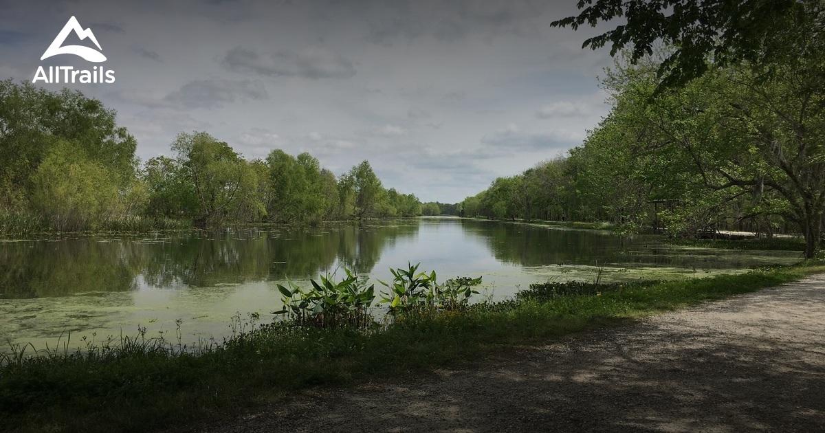 Best Trails In Brazos Bend State Park Texas Alltrails
