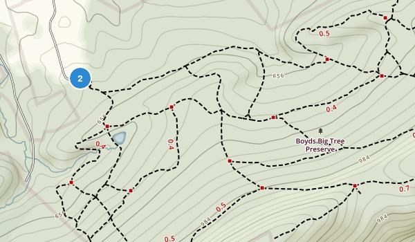 Boyd Big Tree Preserve Conservation Area Map