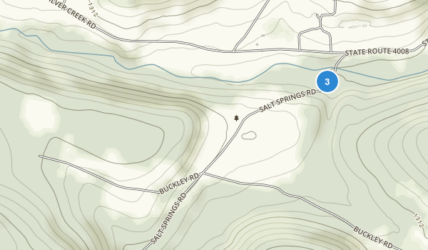 Salt Springs State Park Map