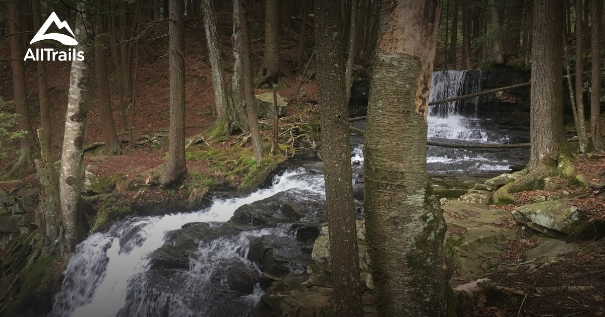 Best Trails In Worlds End State Park Pennsylvania 214