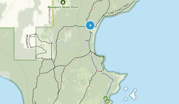 newport ocean drive map pdf