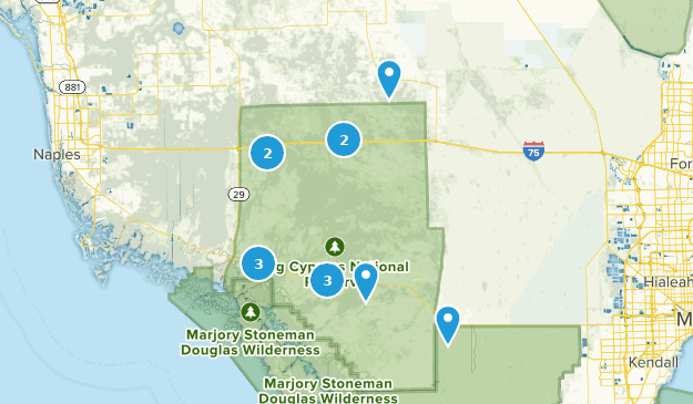 Florida Karte Drucken.Beste Wege In Big Cypress National Preserve Florida Alltrails