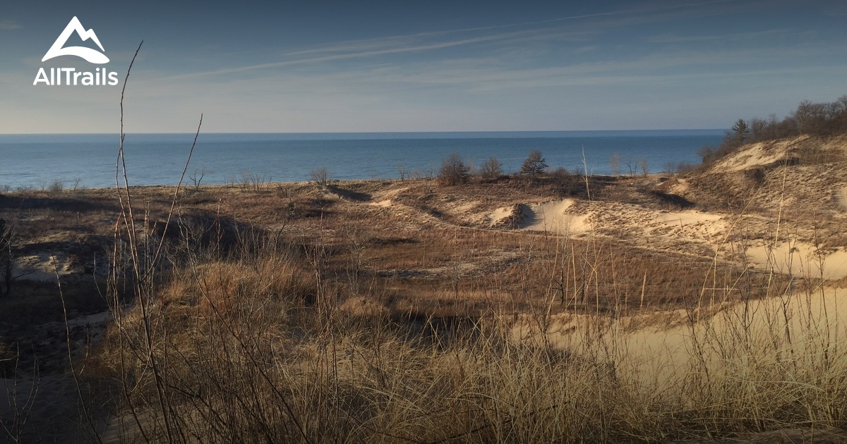 Best Trails In Warren Dunes State Park Michigan Alltrails