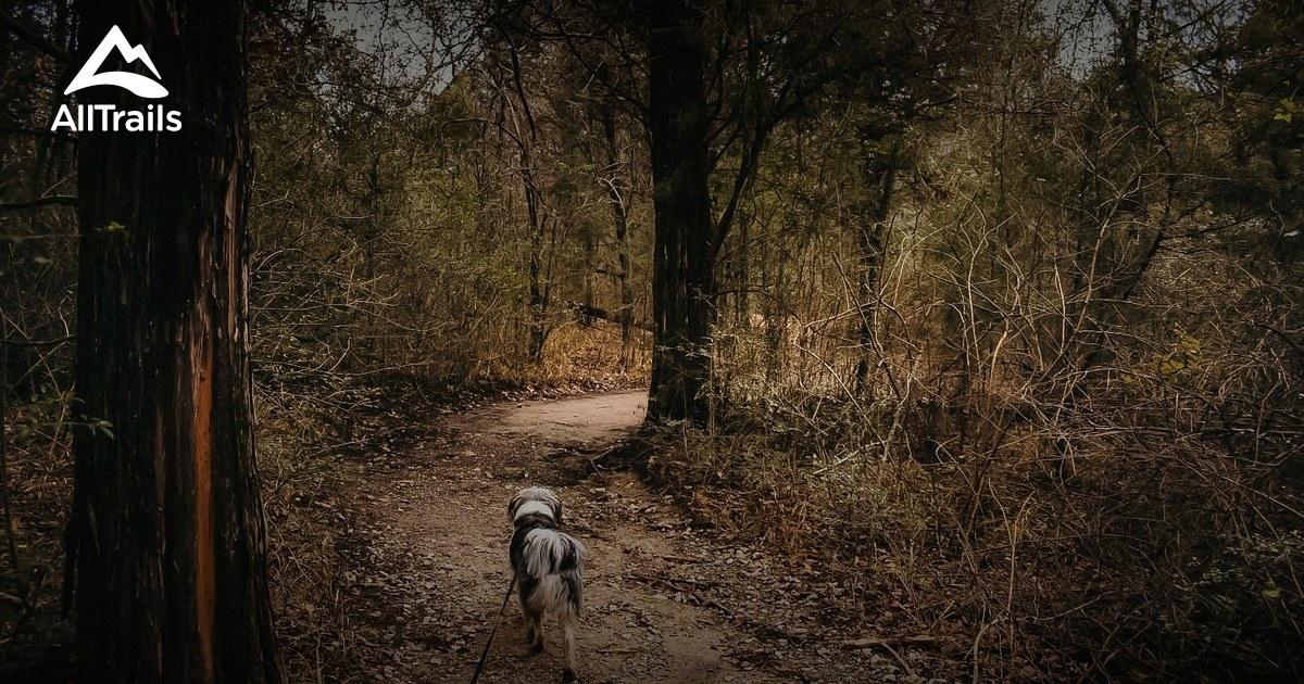 Best Trails in Purtis Creek State Park - Texas | AllTrails