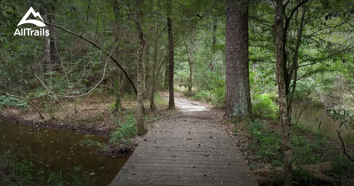 Best Trails in Village Creek State Park - Texas | AllTrails