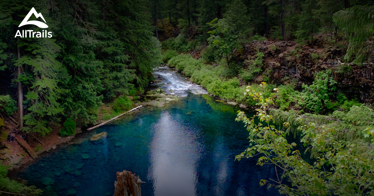 Best Trails In Willamette National Forest Oregon Alltrails