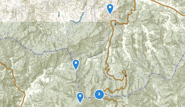 trail locations for Roan Mountain State Park