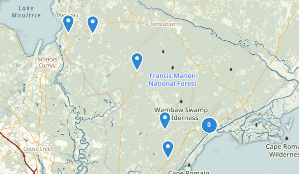 trail locations for Francis Marion National Forest