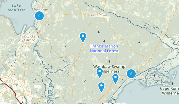 Francis Marion National Forest Map