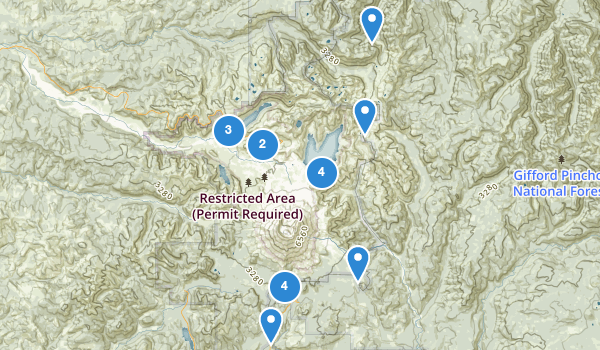 trail locations for Mt St Helens National Monument