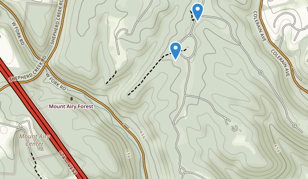 trail locations for Mt Alry Forest