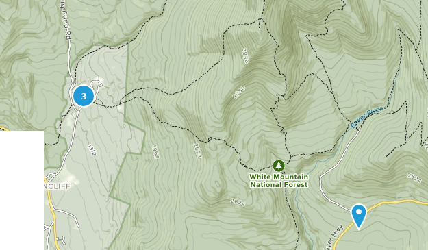 Benton State Forest Map