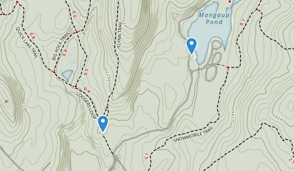 Willowemoc Wild Forest Map