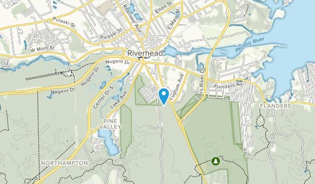 Peconic Bog County Park Map