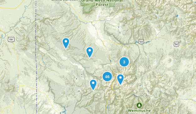 Uncompahgre National Forest Map