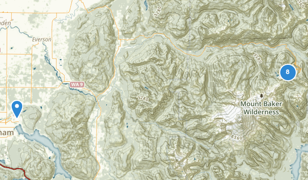 trail locations for Mt Baker Ski Area
