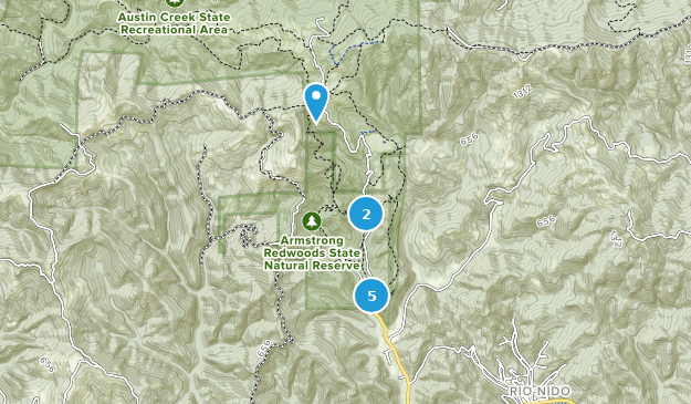 Best Trails In Armstrong Redwoods State Reserve California Alltrails