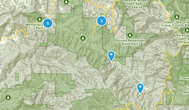 Best Trails in Pescadero Creek County Park - California ...