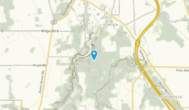 Bosque estatal de Sonyea Map