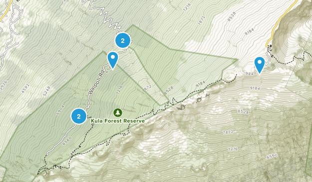 Kula Forest Reserve Map