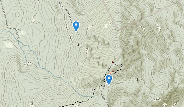 Mt Kearsarge State Forest Park Map