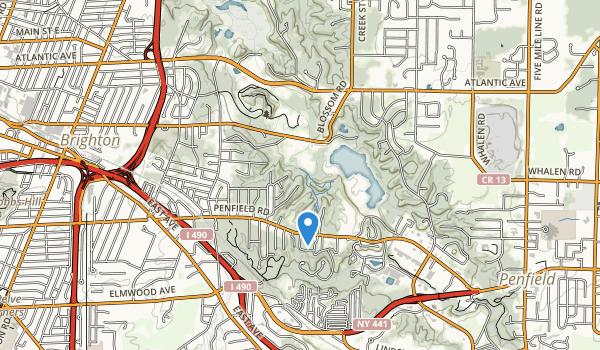 Ellison Park Map