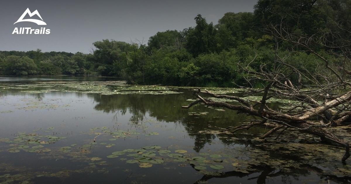Best Nature Pictures Instagram