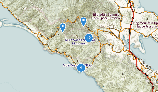 trail locations for Muir Woods National Monument