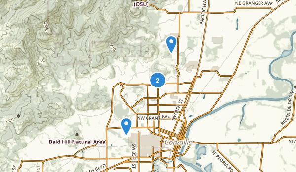 Brandis City Park Map