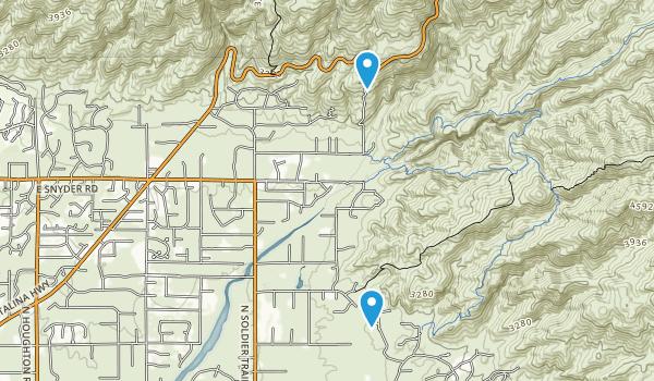 Roy P Drachman - Agua Caliente Regional Park Map