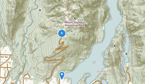trail locations for Mount Seymour Park