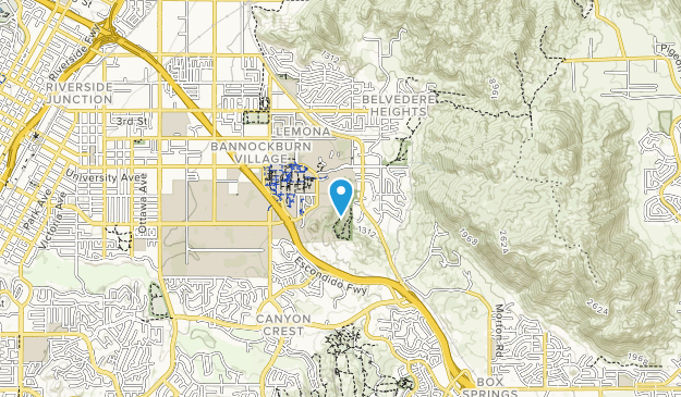 Best Trails in Ucr Botanic Gardens - California | AllTrails