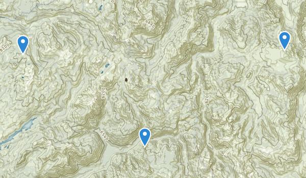 Carson-Iceberg Wilderness Map