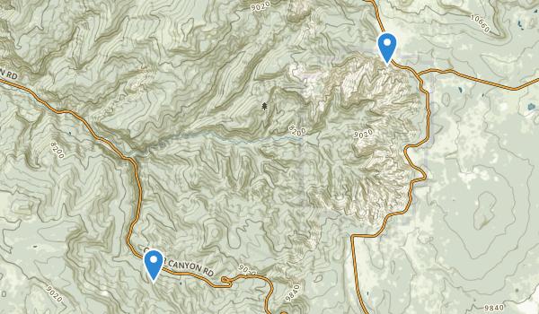 Ashdown Gorge Wilderness Map