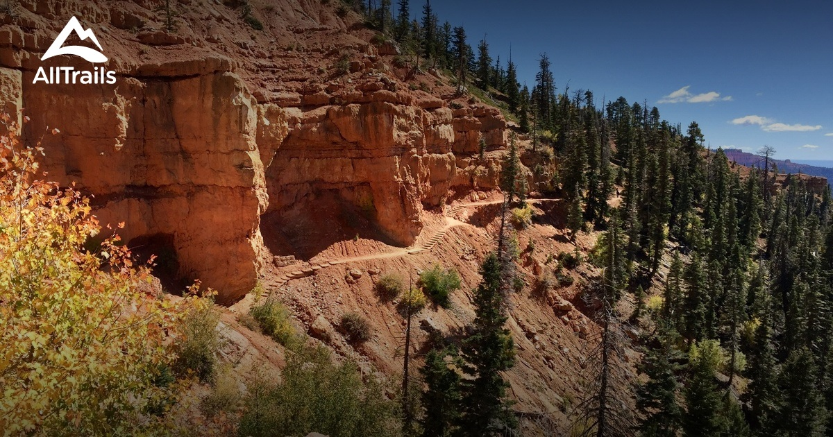 best trails in dixie national forest