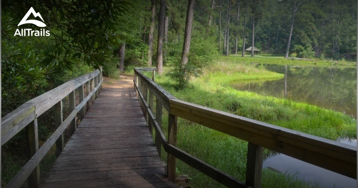 Southern Phone Reviews >> Best Trails in Homochitto National Forest - Mississippi ...