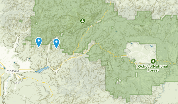 Ochoco National Forest Map
