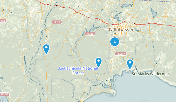 Apalachicola National Forest Map