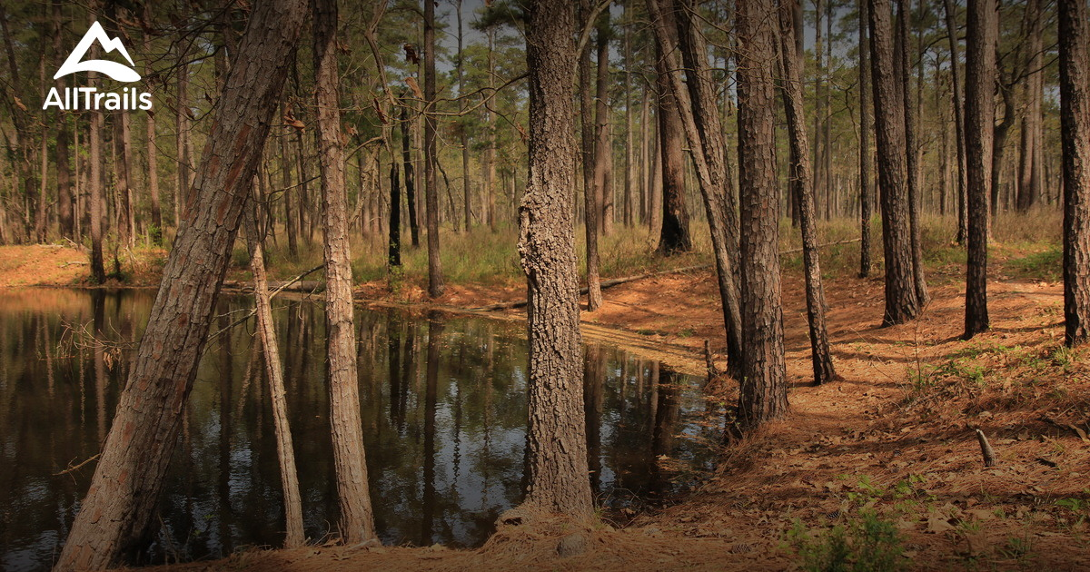 best trails in sam houston national forest