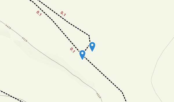 Anthony, NM Map