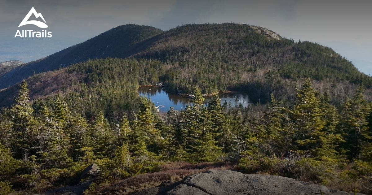 Second Nature Wilderness Reviews