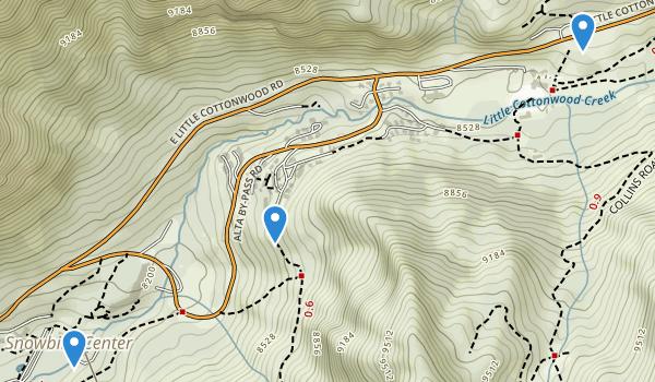 trail locations for Snowbird Ski Resort