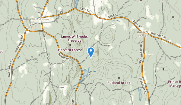 trail locations for Brooks Woodland Preserve