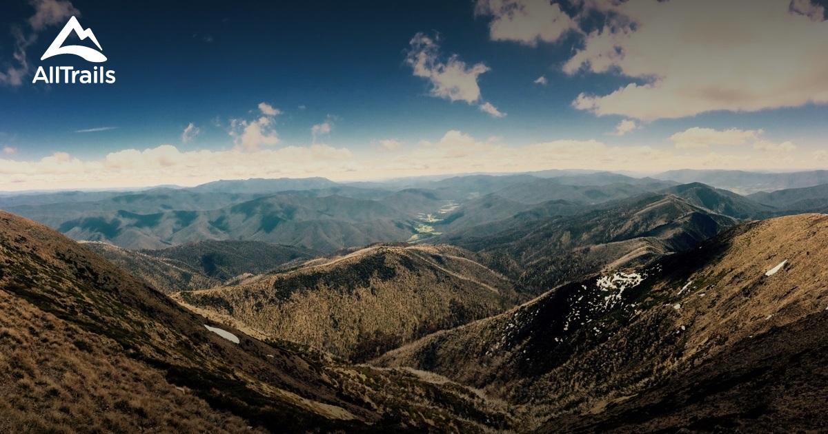 best trails in alpine national park